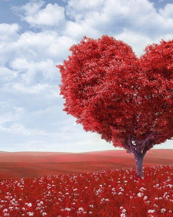 fuga romantica di san valentino